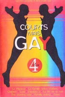 Courts mais Gay: Tome 4  - Courts mais Gay: Tome 4