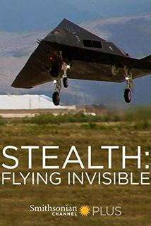 Stealth: Flying Invisible