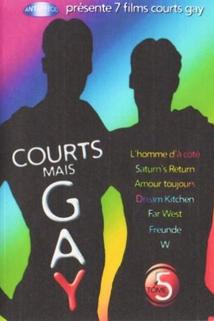 Courts mais GAY: Tome 5