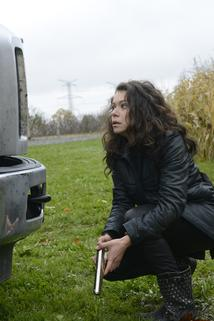Orphan Black - Formalized, Complex, and Costly  - Formalized, Complex, and Costly