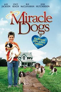 Zázrační pejsci  - Miracle Dogs