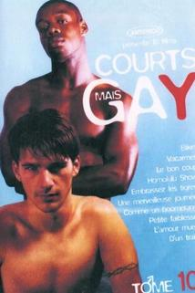 Courts mais GAY: Tome 10