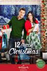 12 Gifts of Christmas (2015)