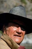 Šerif Cogburn