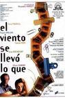 Co vítr dal a vzal (1998)
