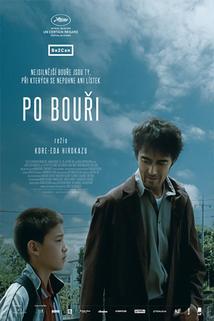 Plakát k filmu: Po bouři