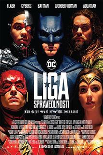 Plakát k filmu: Liga spravedlnosti 3D