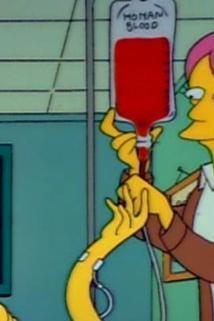 Simpsonovi - Krevní msta  - Blood Feud
