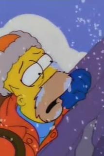 Simpsonovi - Homer horolezcem  - King of the Hill