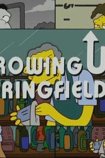 Simpsonovi - Vyrůstáme ve Springfieldu  - Springfield Up