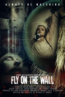 Fly on the Wall  - Fly on the Wall