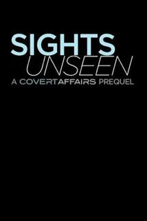 Covert Affairs: Sights Unseen