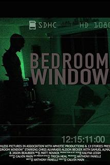 Bedroom Window  - Bedroom Window