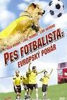 Pes fotbalista: Evropský pohár