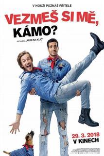 Plakát k filmu: Vezmeš si mě, kámo?