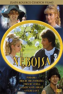 Plakát k filmu: Nebojsa