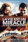 Život je zázrak (2004)