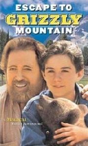 Návrat na Medvědí horu
