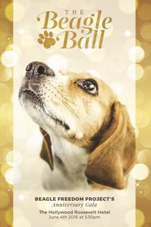 5th Annual Beagle Ball Live