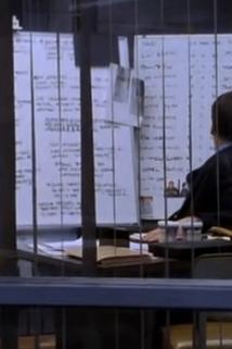 Zákon a pořádek: Zločinné úmysly - Probability  - Probability