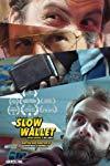 Slow Wallet