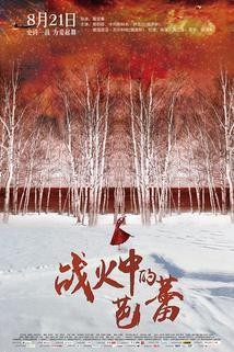 Zhan huo zhong de ba lei