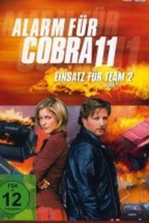 Kobra 11. Nasazení týmu 2