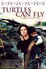 Želvy mohou létat (2004)