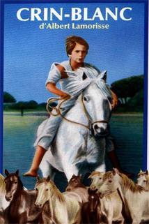 Bílá hříva  - Crin blanc: Le cheval sauvage