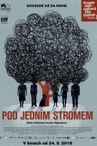 Plakát k filmu: Pod jedním stromem