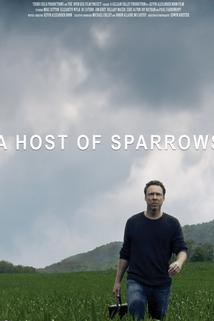 A Host of Sparrows ()