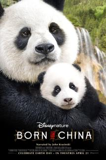 Plakát k filmu: Born in China