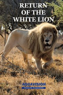 Return of the White Lion