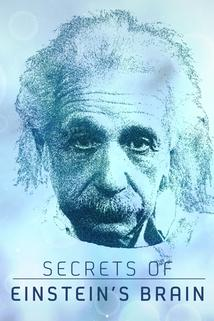 Secrets of Einstein's Brain