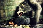 Moje sestra vlkodlak 2