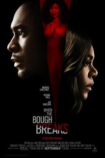 Plakát k filmu: When the Bough Breaks