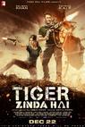Plakát k filmu: Tiger Zinda Hai