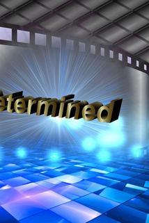 Till Be Determined  - Till Be Determined