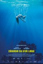 Plakát k filmu: Záhada Silver Lake