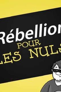 Rébellion pour les Nuls