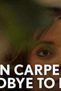 Karen Carpenter: Goodbye to Love