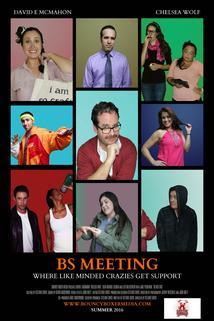 BS Meeting