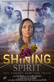 Shining Spirit