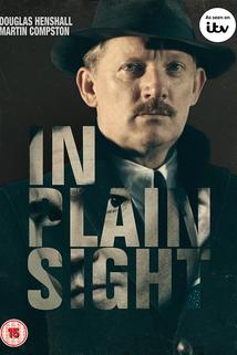 In Plain Sight  - In Plain Sight