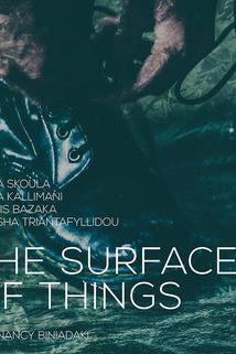 The Surface of Things ()