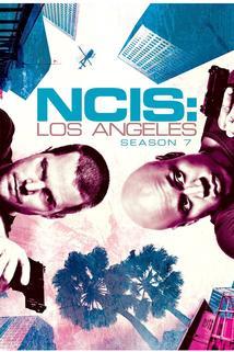 NCIS: Los Angeles - Season 7: Seeing Double