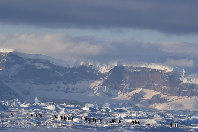 Putování tučňáků: Volání oceánu