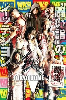 NJPW Wrestle Kingdom 9