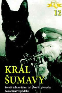 Plakát k filmu: Král Šumavy