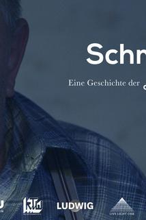Schmidt: Eine Geschichte der deutschen Provinz